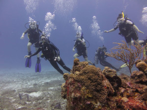 The Scuba Club diving at Chacanaal Reef on the third day