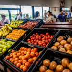 VIVA SA: Fresh Produce Initiative Brings Life to San Antonio Food Desert
